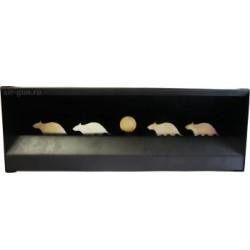 Мишень-ловушка для пуль 4 крысы (Минитир) Target Shot T-D mini NEW